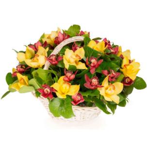 """Цветы в корзинке """"Орхидеи микс"""""""